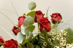 10 blommor Arkivfoto