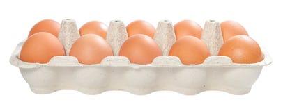 10 braune Eier Lizenzfreie Stockbilder