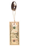 10 dollars tag Stock Images