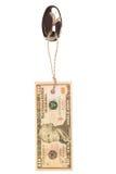 10 dollarsmarkering Stock Afbeeldingen