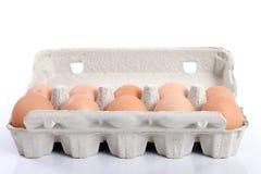 10 Eier. Lizenzfreies Stockfoto