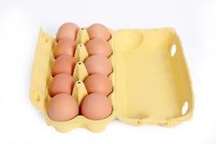 10 Eier. Lizenzfreies Stockbild