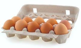 10 Eier in der Kassette Stockbild
