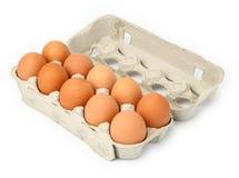 10 Eier in einem Kasten Stockfotografie