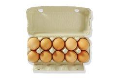 10 Eier im grauen Kasten. Lizenzfreie Stockbilder