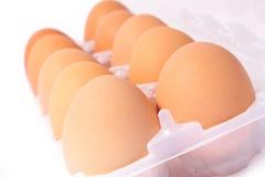 10 Eier im Plastikkasten Lizenzfreies Stockfoto