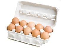10 Eier im weißen Kartonkasten Lizenzfreies Stockfoto