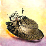 10 hattar royaltyfri bild