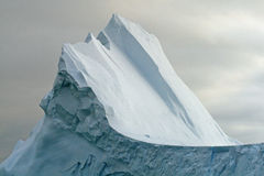 10 kaczorów góra lodowa przejście Obrazy Stock