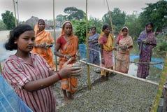 10 milione piantagioni dell'albero in Sunderban Fotografia Stock