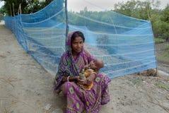10 millions de plantation d'arbre dans Sunderban Photographie stock libre de droits