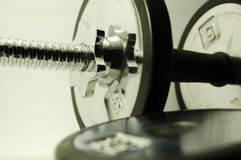 10 Pfund Dumbbell Stockfotografie