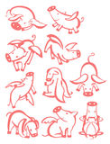 10 pigs. A set of silhouettes fairy, winged piggies. Vector illustration Royalty Free Stock Image