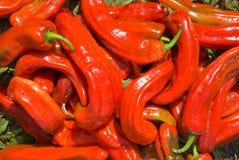 10 röda peppar Arkivbilder