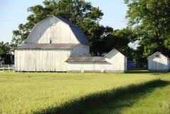 10 stodole obrazy royalty free