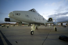 A-10 Warthog Royalty Free Stock Photos