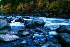 10 widelce na jesieni Obrazy Royalty Free