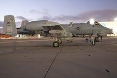 A-10 wrattenzwijn Royalty-vrije Stock Afbeeldingen