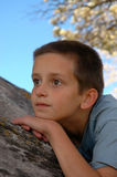 10 year old boys portrait. Looking away, leaning on tree Stock Photos