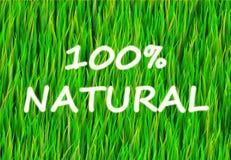 100 φυσικά Στοκ Εικόνες