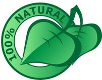 100自然的图标 免版税库存照片