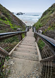 对海滩的100步 库存图片