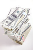 100 dollar pengar Arkivfoton