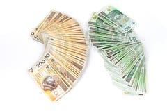 100 en 200 Poolse Zlotys Royalty-vrije Stock Afbeelding