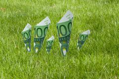 100 euro notes blooming in the grass Stock Image