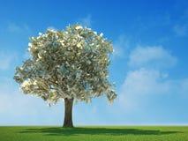 100 fatture del dollaro che crescono su un albero Fotografia Stock Libera da Diritti