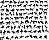 100 horses stock illustration