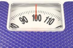 100 Kilogramm Lizenzfreies Stockfoto