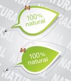 100 naturliga etiketter Royaltyfria Bilder