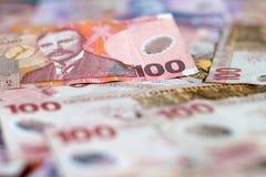 $100 Neuseeland Dollar-wohlhabender reicher Hintergrund Stockfotografie