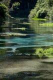 100 nowy czysty Zealand Obrazy Stock