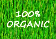 100% Organic. And Pure Now Abstract Background Stock Photography
