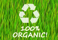 100% Organic. And Pure Now Abstract Background royalty free illustration
