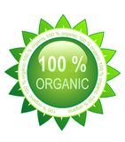 100 organic green rosette. 100 organic rosette with green leaves Royalty Free Stock Photo