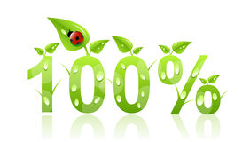 100 percent natural icon Royalty Free Stock Images