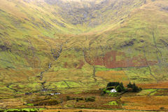 1000 Farbtöne Grün, Irland Lizenzfreie Stockfotos