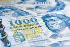 1000 forint - notas de banco húngaras Imagem de Stock