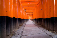 1000 torii of Kyoto. Road of 1000 torii of Kyoto in Winter Royalty Free Stock Photography