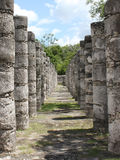1000 Warrior Columns in Chichen-Itza Mexico. Inside view of the Mayan temple of the 1000 warrior columns in Chichen-Itza, Mexico Royalty Free Stock Image