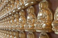 10000 Bouddha d'or dans le temple chinois Images libres de droits