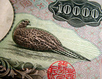 10000 yen texture. Details of a 10000 yen bill Royalty Free Stock Images