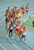 10000m第20个运动欧洲最终人 库存照片