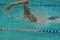 100m自由式种族游泳者 库存图片