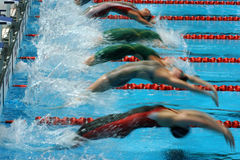 100m back semi start. Women's backstroke start generic Stock Photos