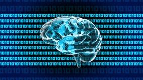 1010年脑子计算机 库存图片