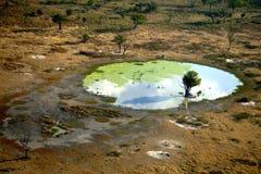 106.b-Delta Okavango-Botswana (11-6-2006) Royalty Free Stock Image